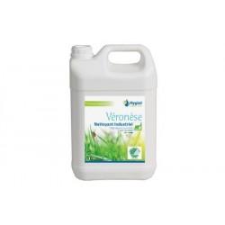 Véronèse nettoyant